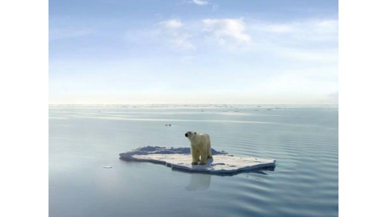 Navy Drones Patrol Beneath Arctic Ice