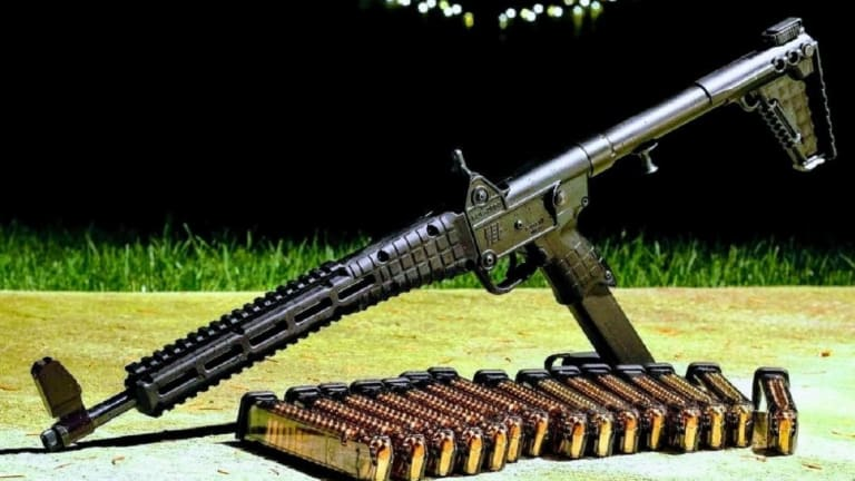 These Are the 5 Best Rifles To Defend Your Family and Property