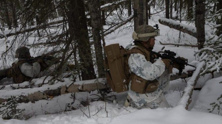 Watch Marines train for Arctic warfare